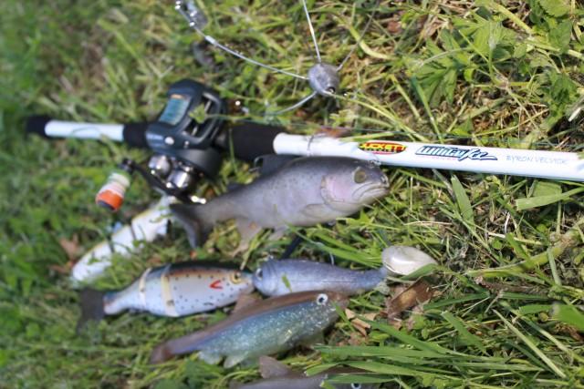 Best Swimbait Rod Advance Product Review Duckett Fishing