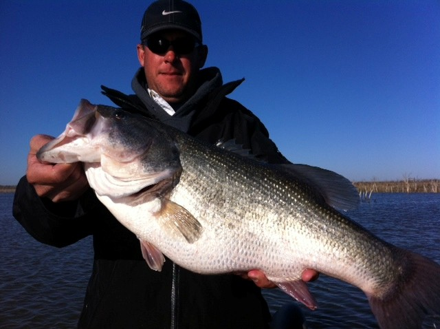 Tony coatney falcon lake report advanced angler bass for Falcon lake fishing