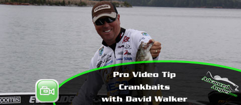 Crankbaits-with-David-Walker-MainImage