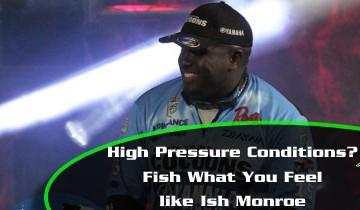 Ish-Monroe-Fish-What-you-Feel-Main-Image