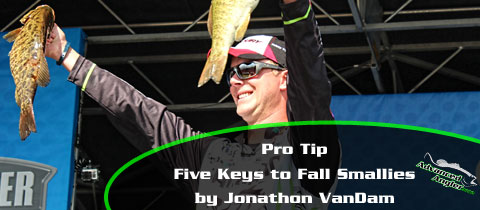 JVD-Five-Keys-to-Fall-Smallies-MainImage