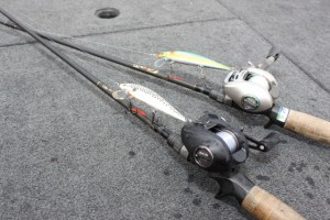 McClellandStickbaitSelection