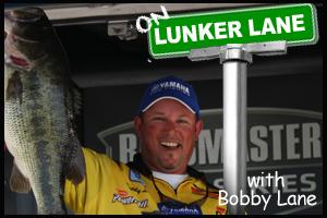 BobbyLaneBlog