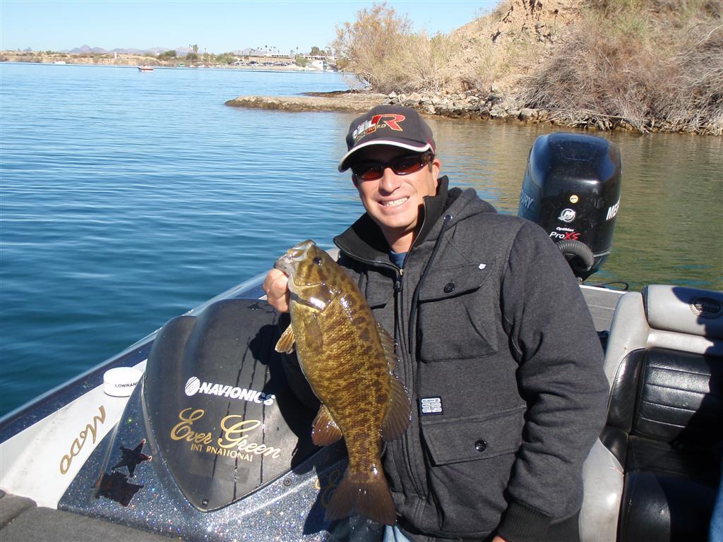 Image gallery kerr lake fishing for Lake havasu fishing