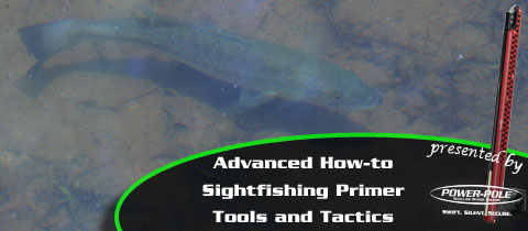 Advanced How-to – Sightfishing Primer