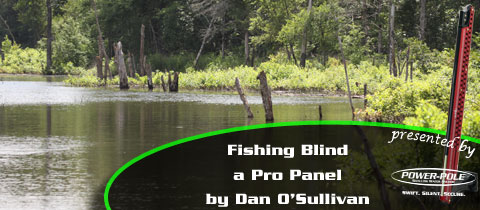 Fishing Blind –  A Pro Panel