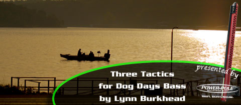 Three Ways to Catch Bass in the Dog Days