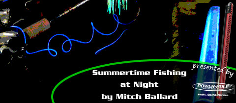 Night Fishing in Summertime