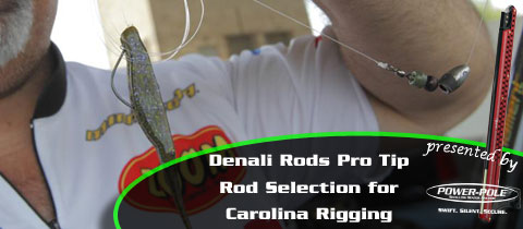 Carolina Rigging – Choosing the Right Rod – a Denali Rods Feature