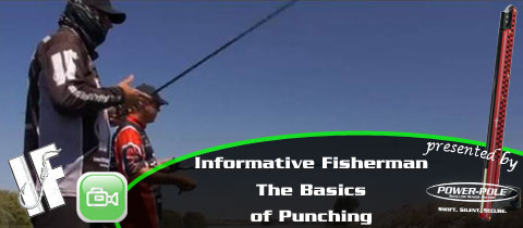 Informative Fisherman – The Basics of Punching