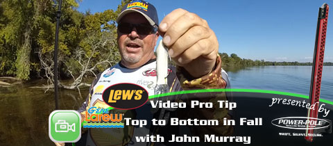 Lew's / Gene Larew Video Pro Tip – John Murray's Top to Bottom Approach for Fall