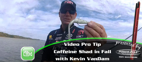 Video Pro Tip – Fishing the Caffeine Shad in Fall Kevin VanDam