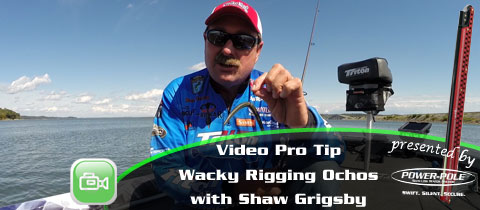 Video Pro Tip – Shaw Grigsby on Wacky Rig Ochos