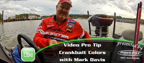 Video Pro Tip – Selecting Crankbait Colors with Mark Davis