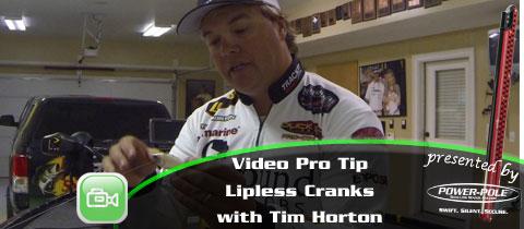 Advanced Video Pro Tip – Lipless Crankbaits with Tim Horton