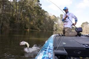 Casey Ashley Battles a Springtime Bass - photo by Dan O'Sullivan