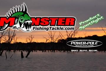 monster fishing advanced angler bass fishing