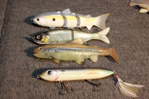 Swimbaits and a Super Spook