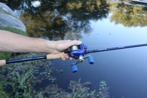 Ardent Denny Brauer Pro Series Rods Umbrella Rig - Heavy Flippin
