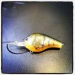 SPRO Fat Papa Olive Craw