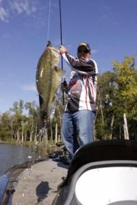 John Murray Swings a Bass Aboard that he Caught on the Biffle Bug