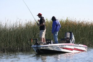 Anglers Team up to Fish in Summer  - photo by Dan O'Sullivan
