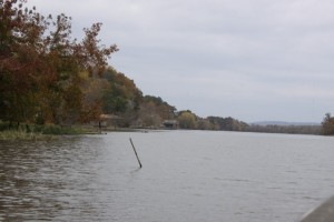 Submerged Cover on the Coosa River - photo by Dan O'Sullivan