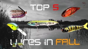 Tactical BAssin Fall Baits